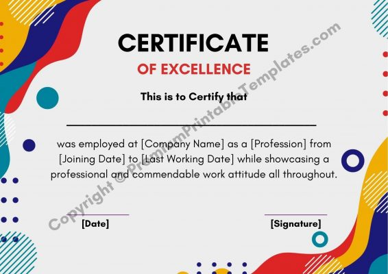 Certificate of Excellence PDF