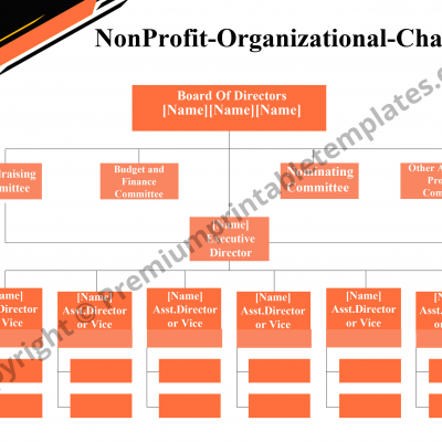 Non Profit Organizational Chart PDF
